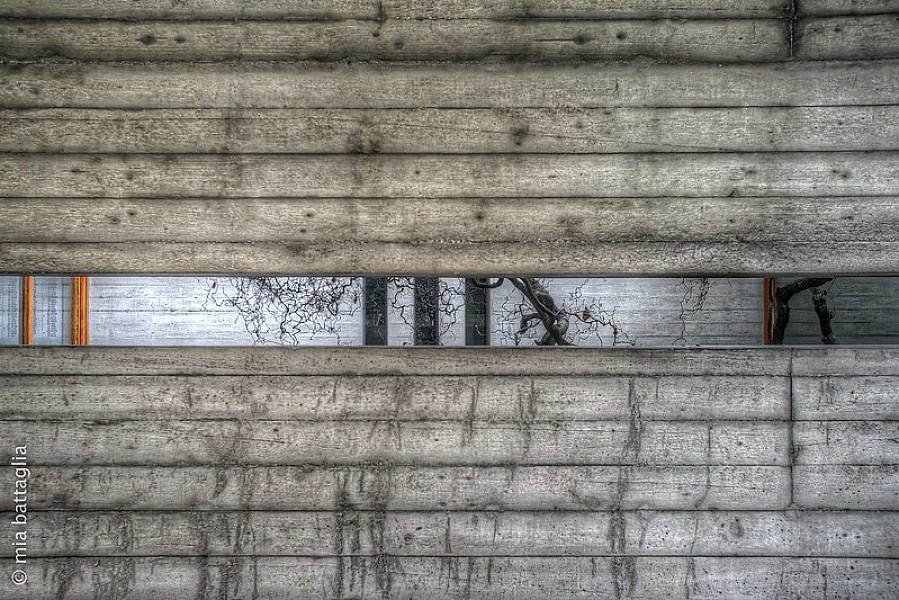 Treviso, Grafiche Vianello